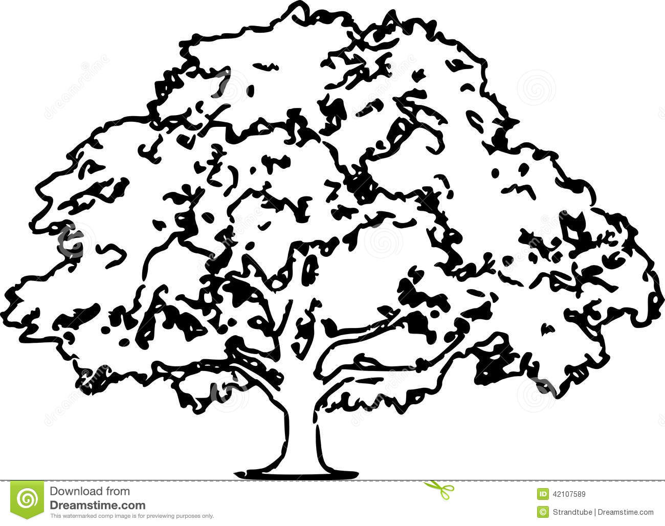 Oak Tree Sketch Illustration Eps Stock Vector