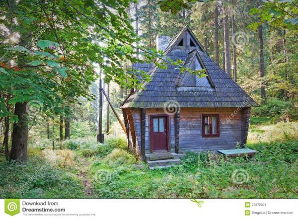 Abandoned Wooden House. Stock - 28372027