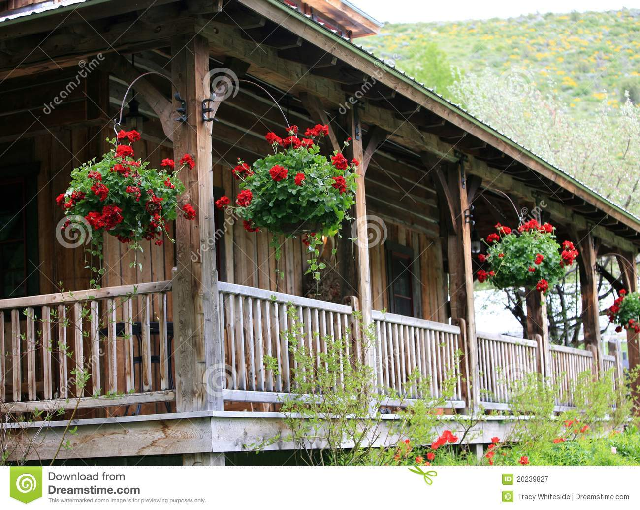 Old House On Ranch Stock Image Image Of Planter Lodge 20239827