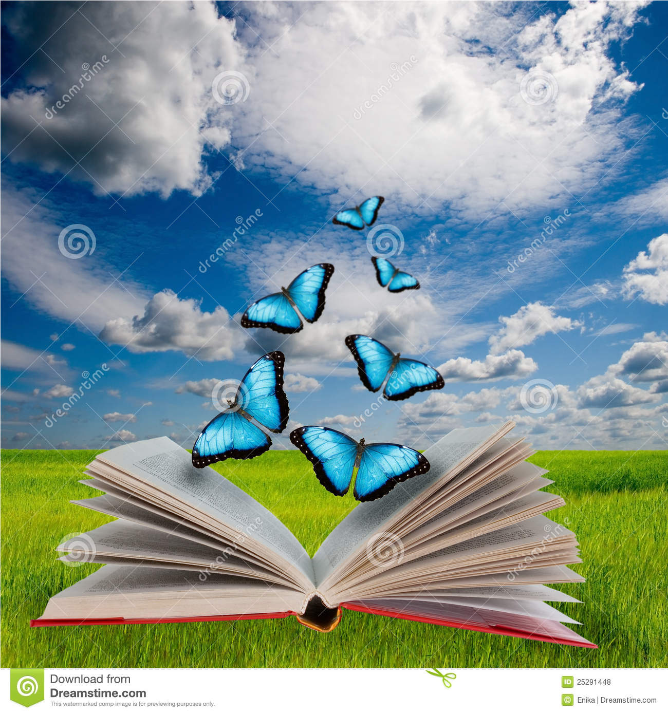 Swimming Wallpaper Quotes Open Book And Butterflies Royalty Free Stock Photos