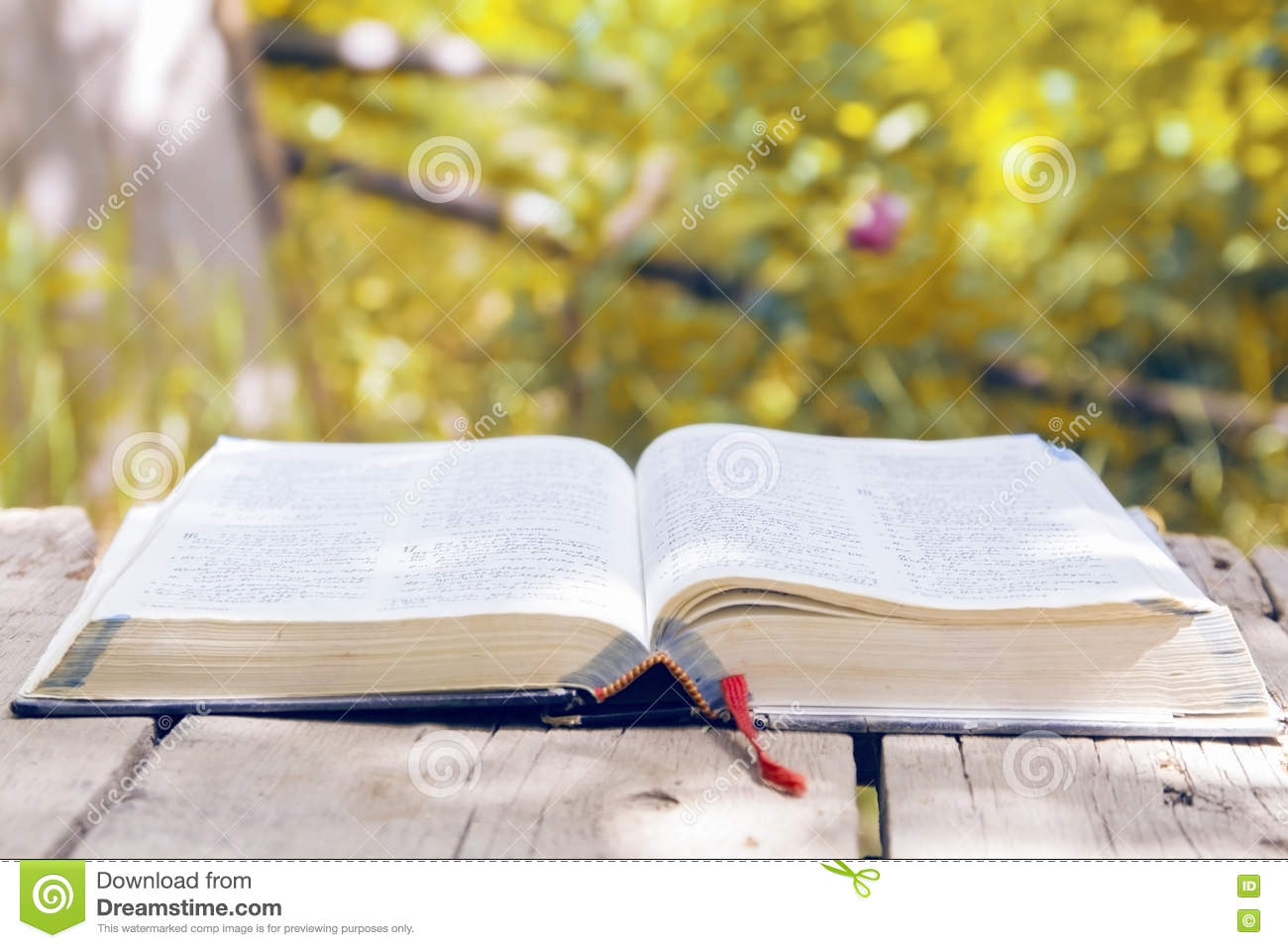 Bible Quotes In Tamil Wallpaper Open Glowing Bible In Nature Stock Photo Image Of Book