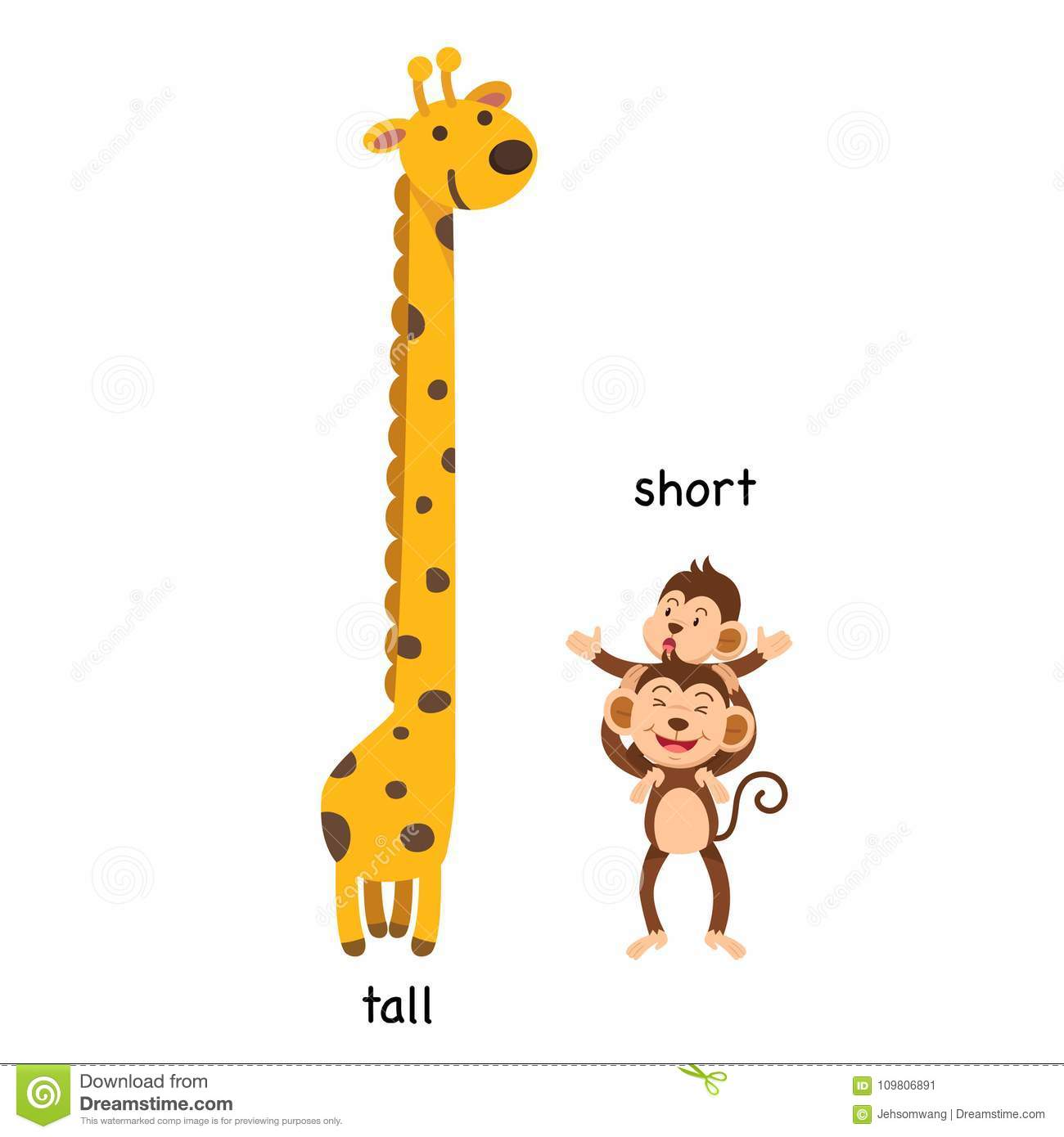 Opposite Tall And Short Stock Vector Illustration Of