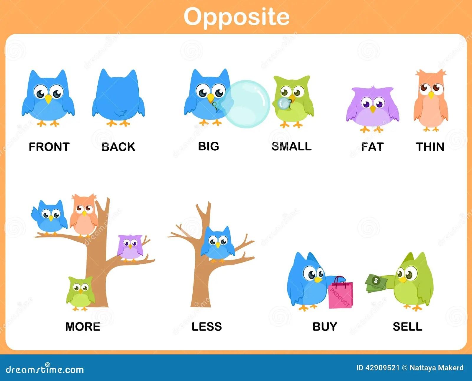 Opposite Word For Preschool Stock Vector