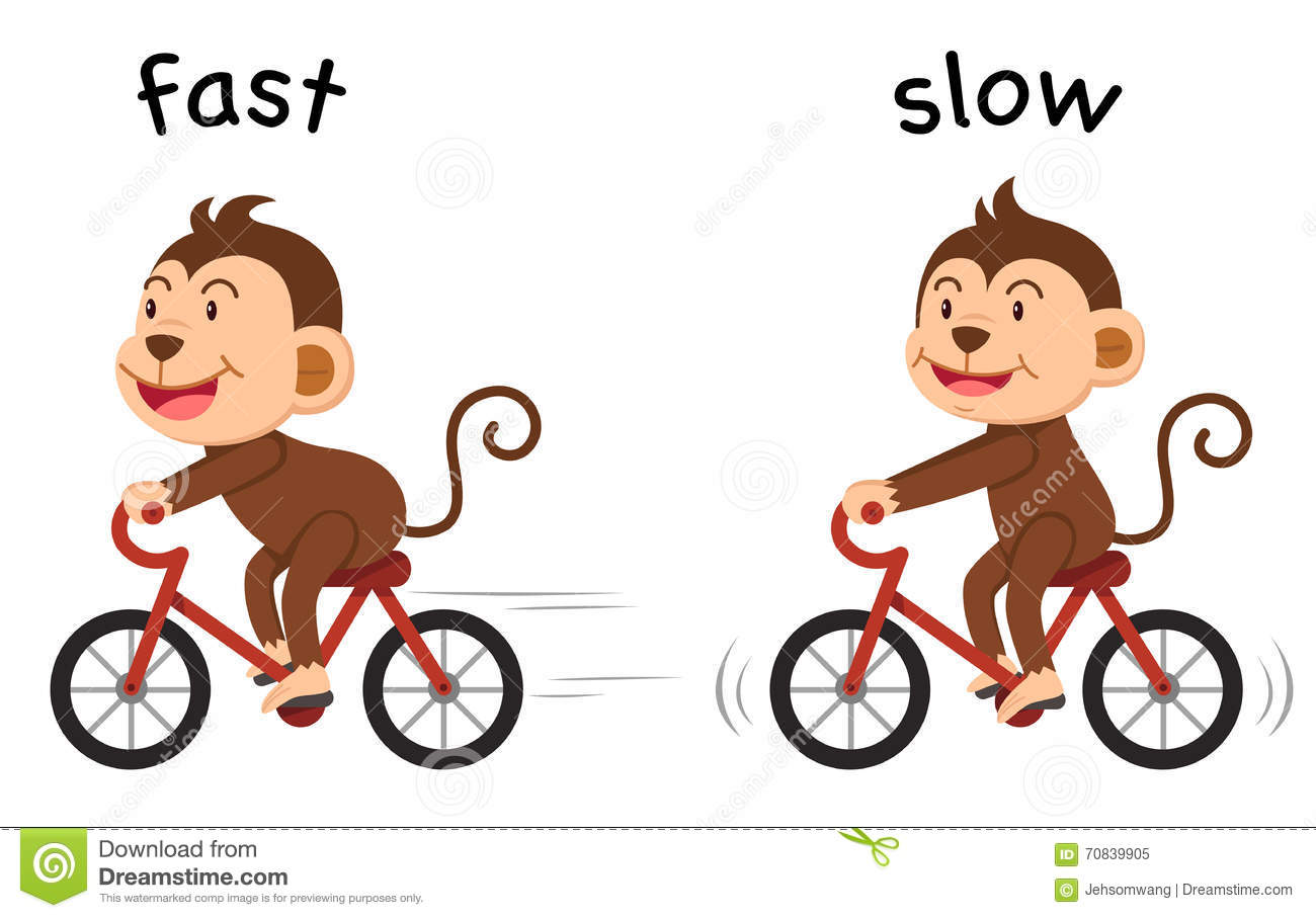 Opposite Words Fast And Slow Vector Stock Vector
