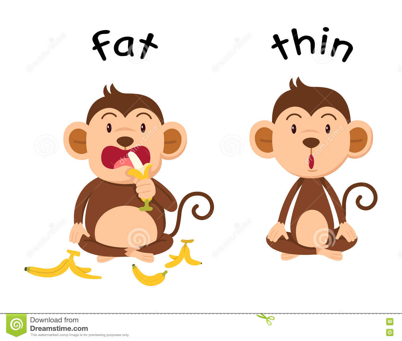 Opposite Words Fat And Thin Stock Vector