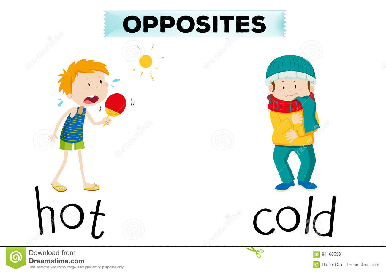 Adjectives And Opposites In Spanish Worksheet