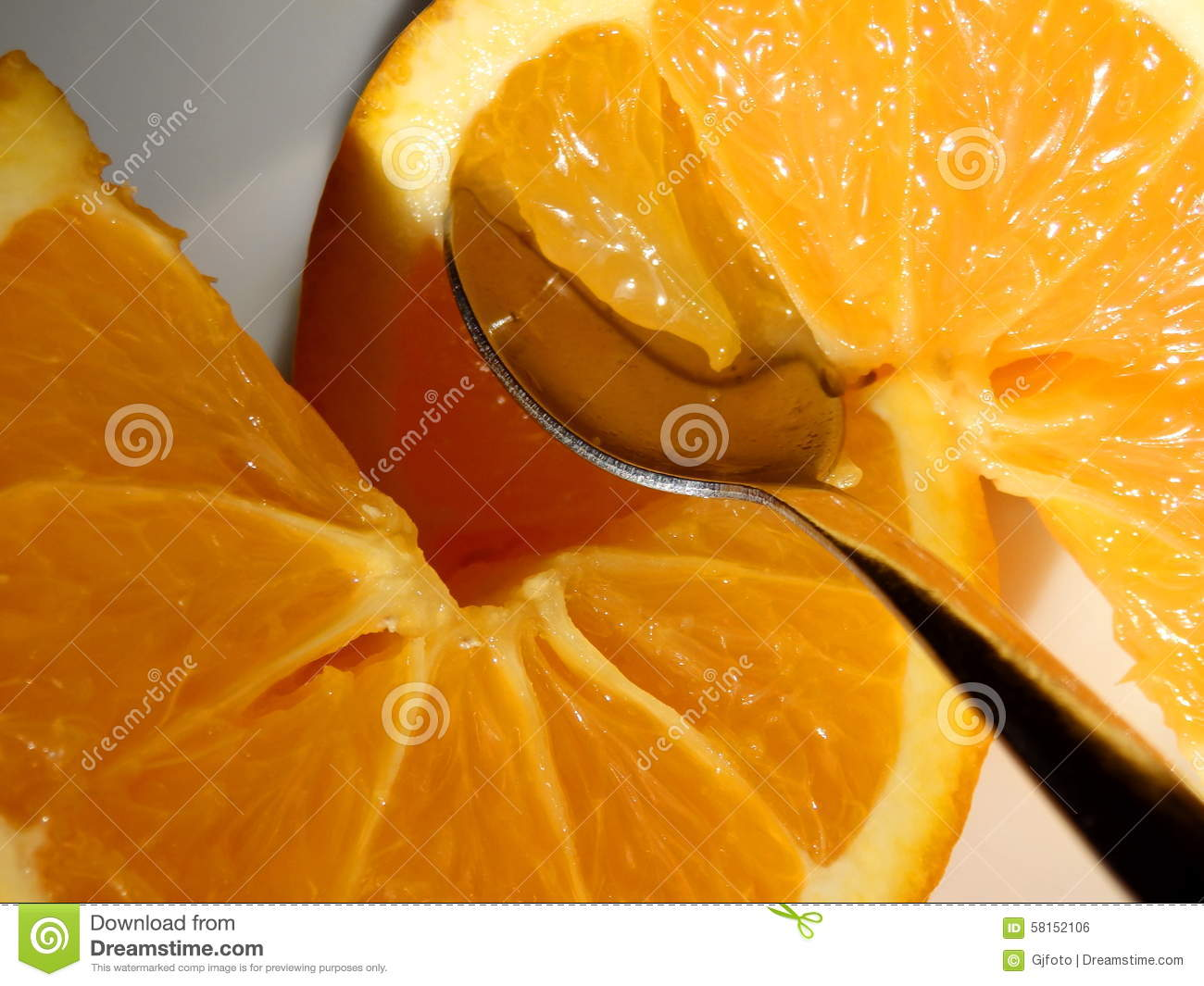 parts of an orange fruit diagram explain schematic and wiring diagrams is cut into two royalty free stock
