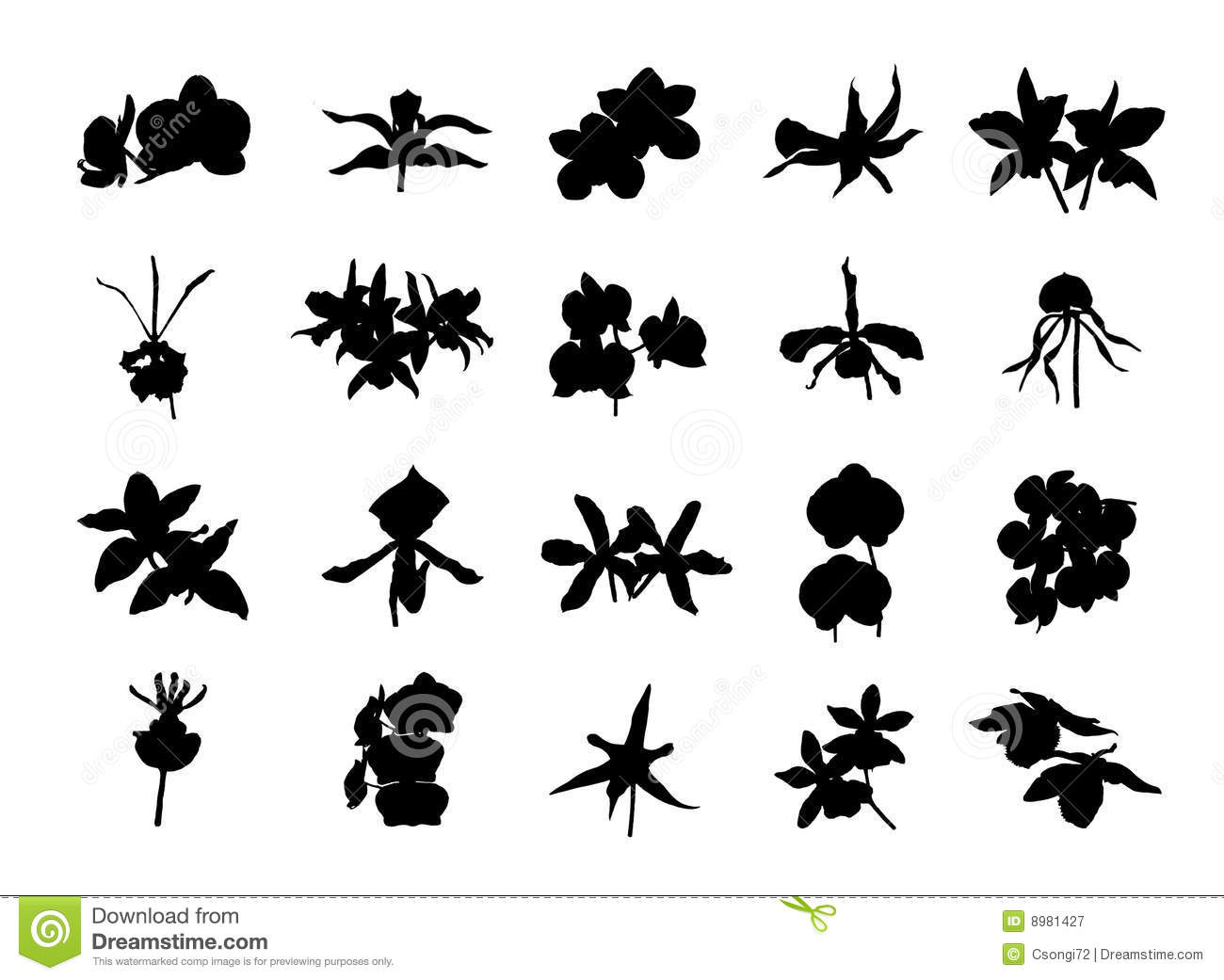 Orchid Silhouettes Royalty Free Stock Photography