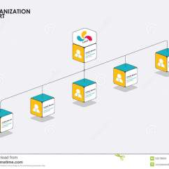 Animated Tree Diagram Bargman 7 Way Trailer Wiring Organization Chart Infographics With Flow