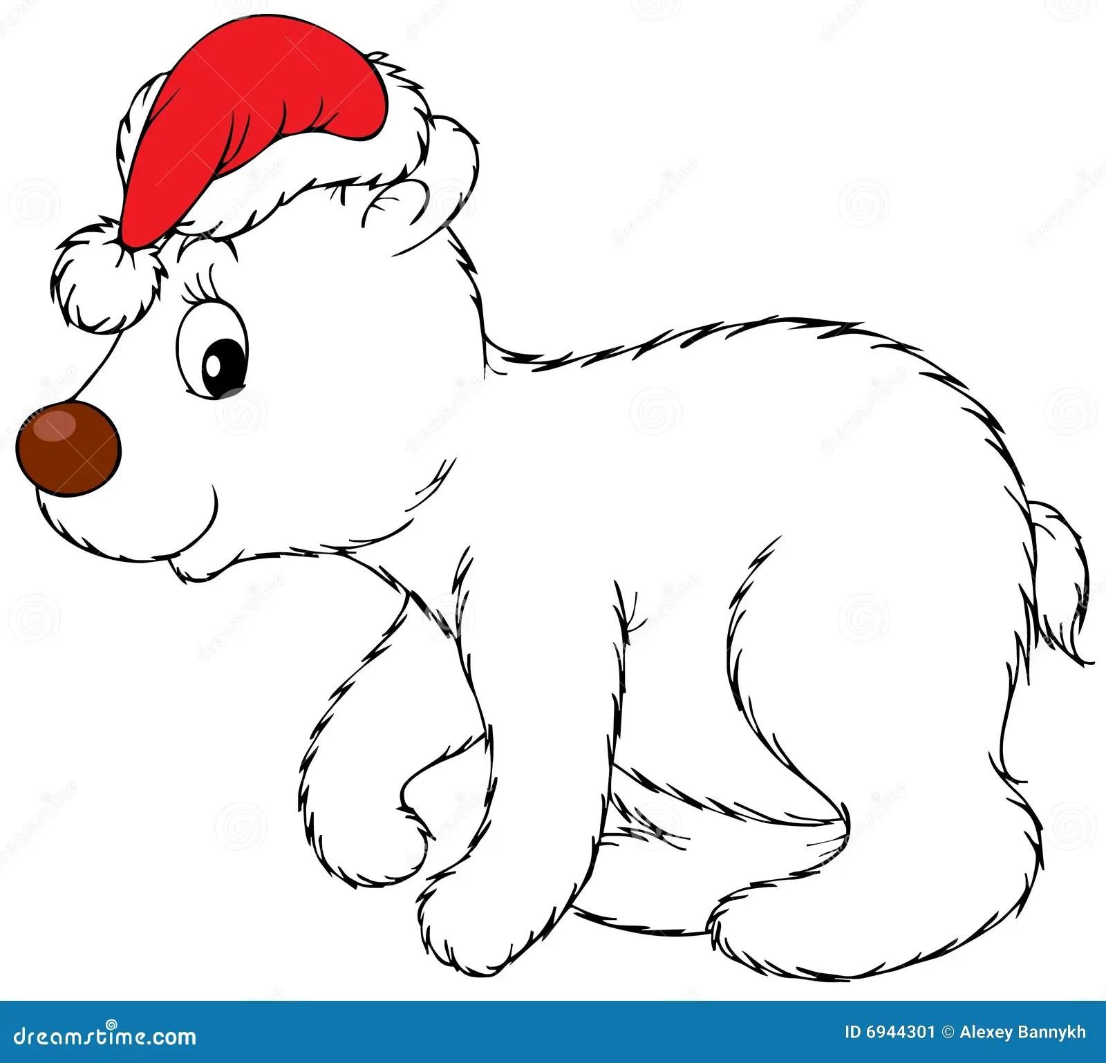 Oso Polar Que Desgasta El Casquillo De Navidad Imagen De