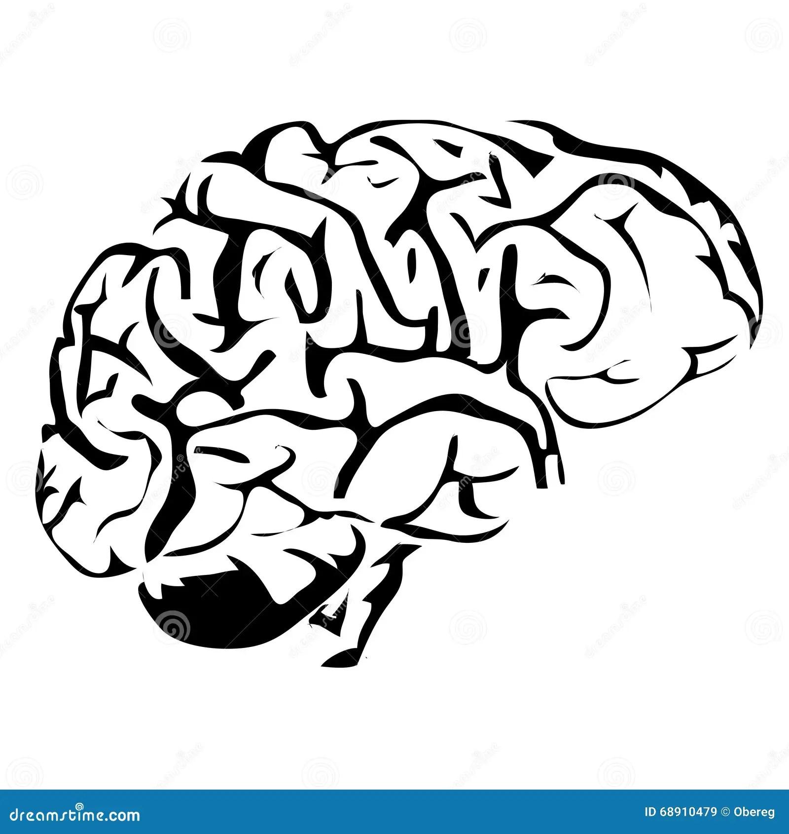 Outline Brain Human Internal Organs Stock Vector