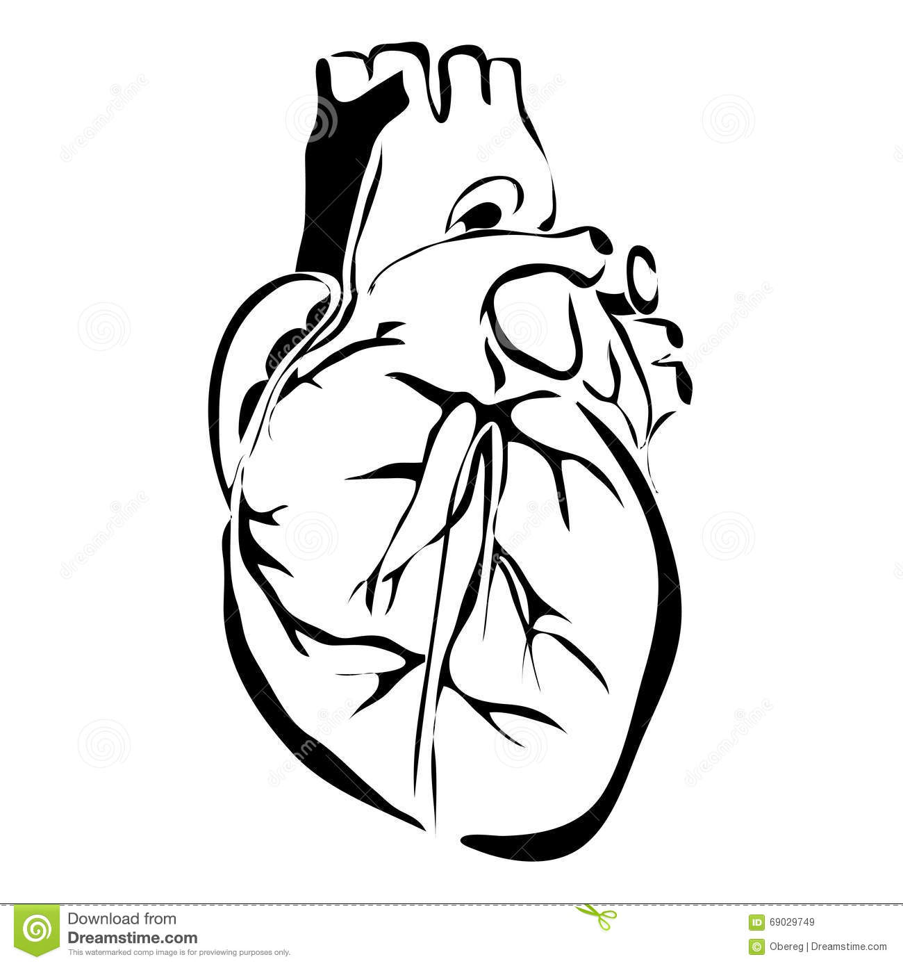 organ diagram outline from use case hotel heart human internal organs stock vector image