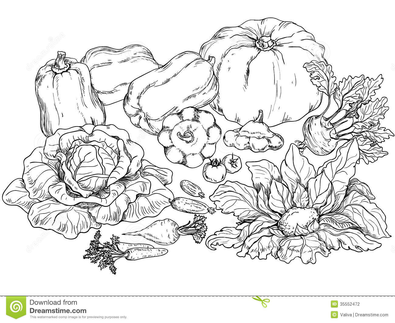 Outlines Of Various Vegetables Stock Photography