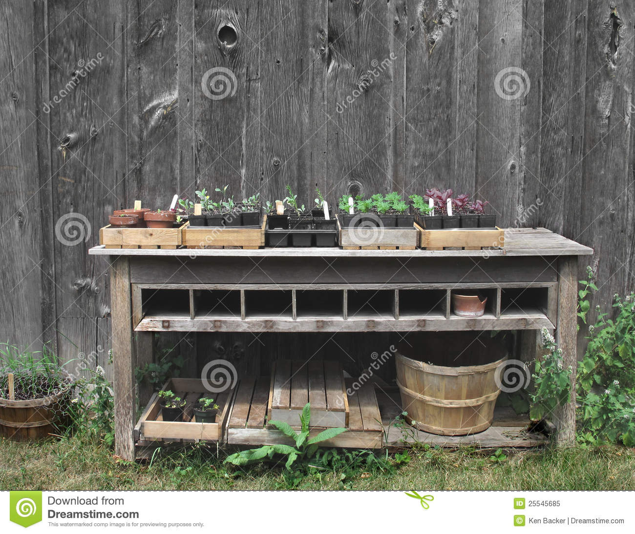 Outside Gardening Table With Plants Stock Image  Image