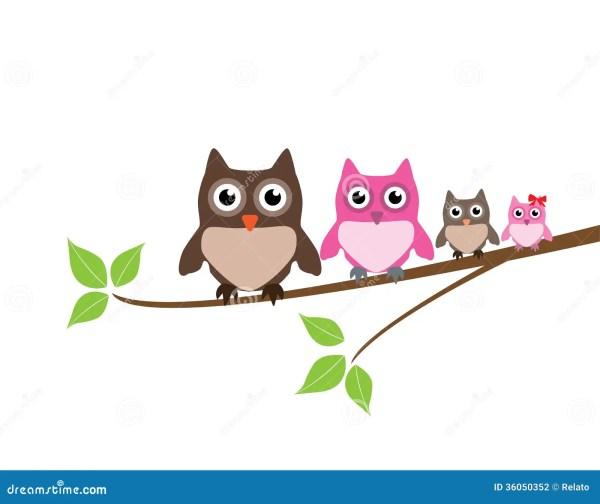Owl Family Stock - 36050352