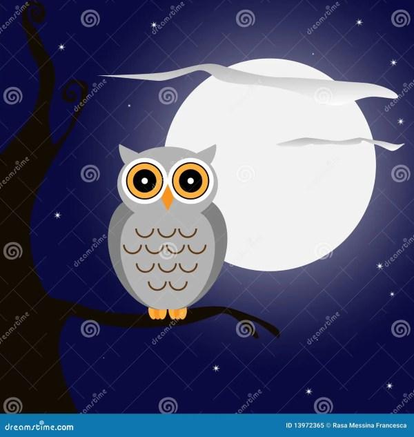 Owl Night Royalty Free Stock - 13972365