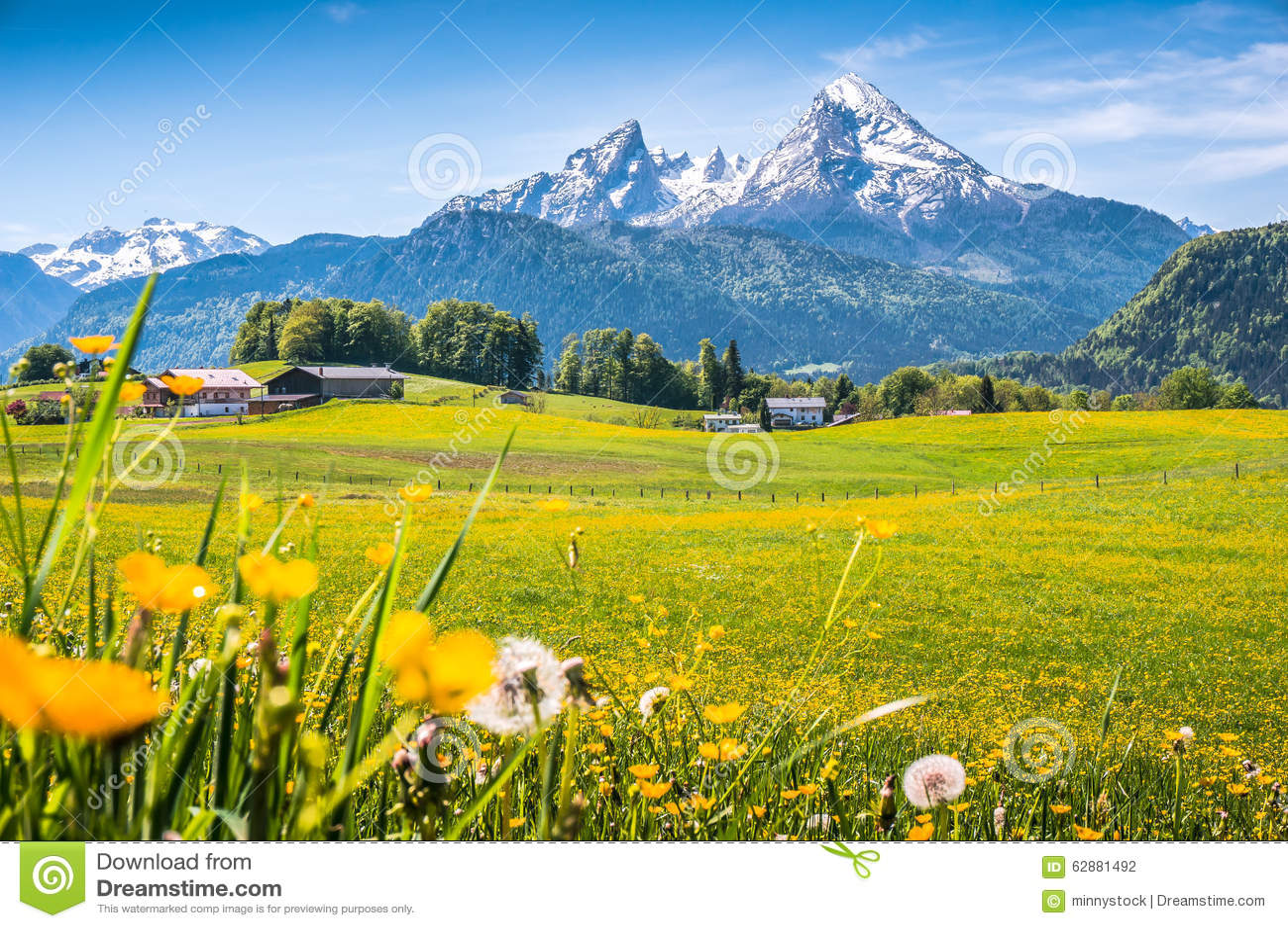 Paesaggio Alpino Idilliaco Con I Prati Verdi Le Fattorie E Le Cime Snowcapped Della Montagna Fotografia Stock  Immagine di podere verde 62881492