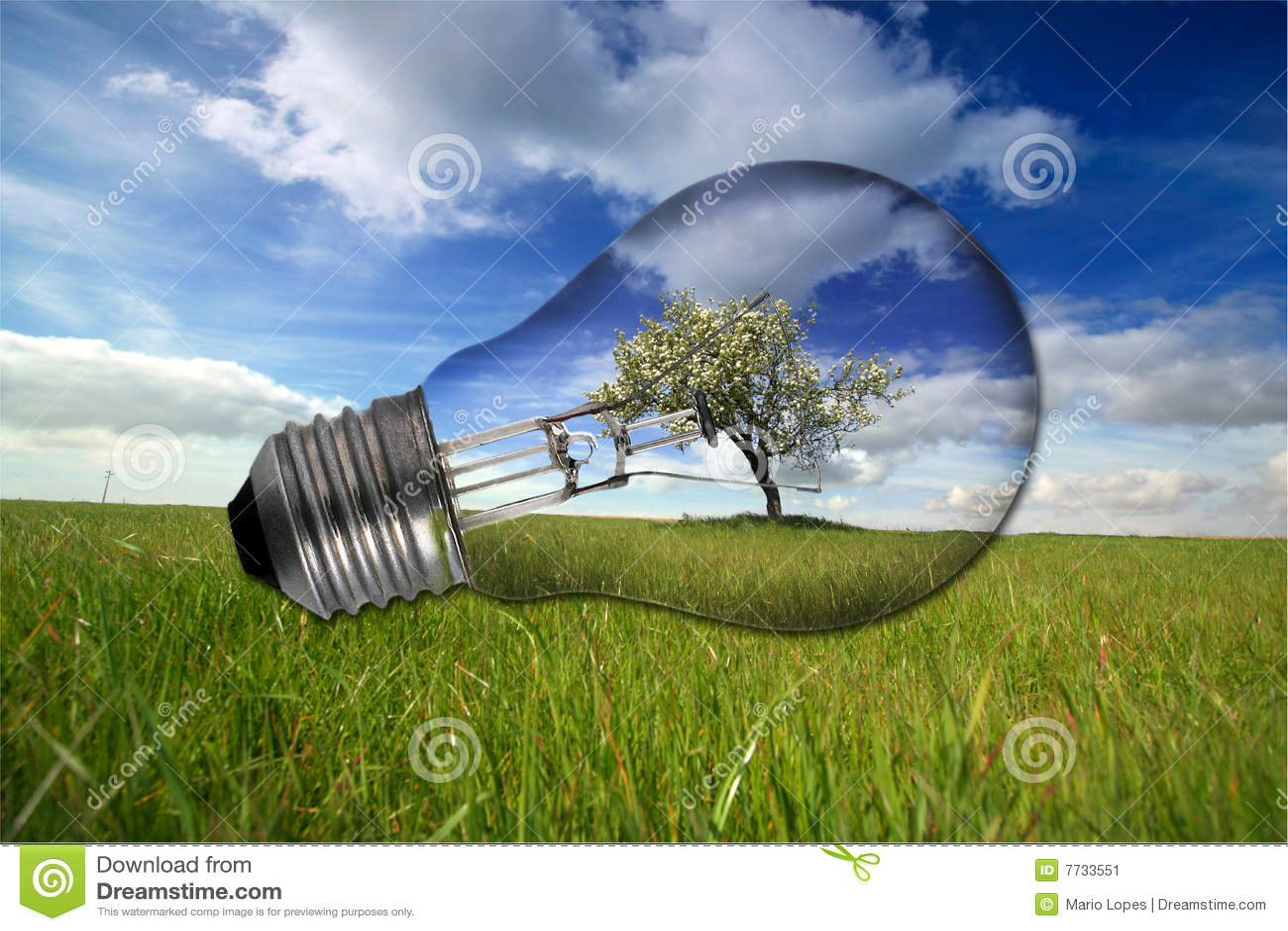 Paesaggio Con La Lampadina Riciclata Immagine Stock  Immagine di ecologia verde 7733551