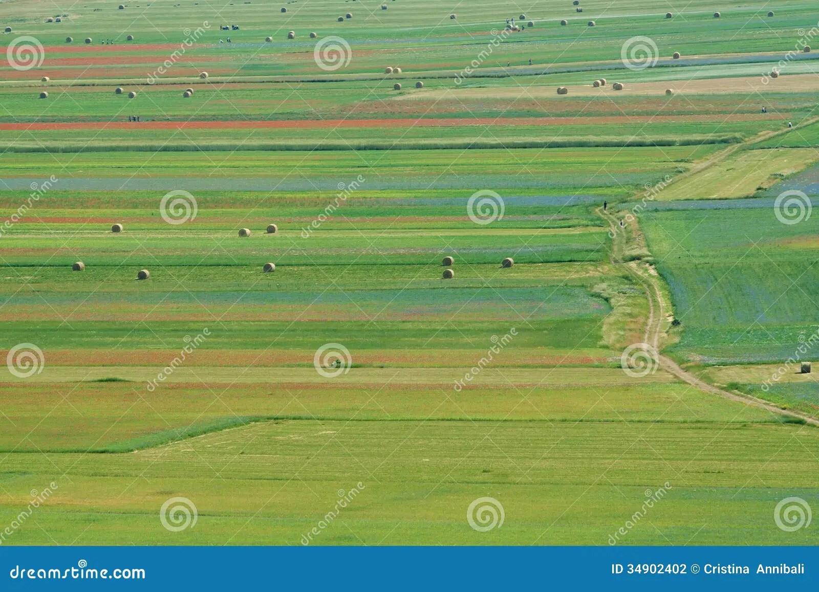 Paesaggio Della Pianura Di Castelluccio In Italia