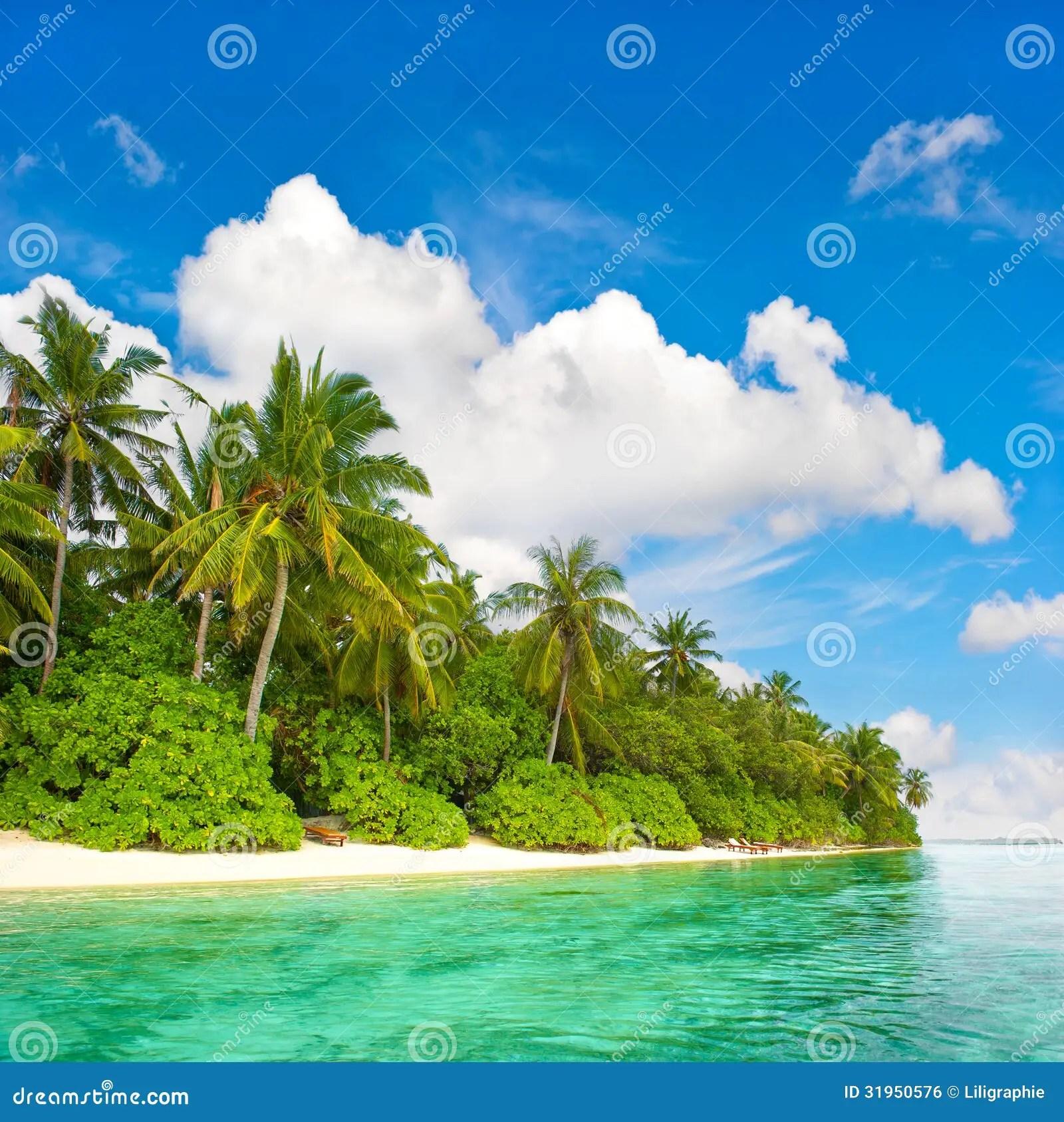 Paesaggio Della Spiaggia Tropicale Dellisola Immagine