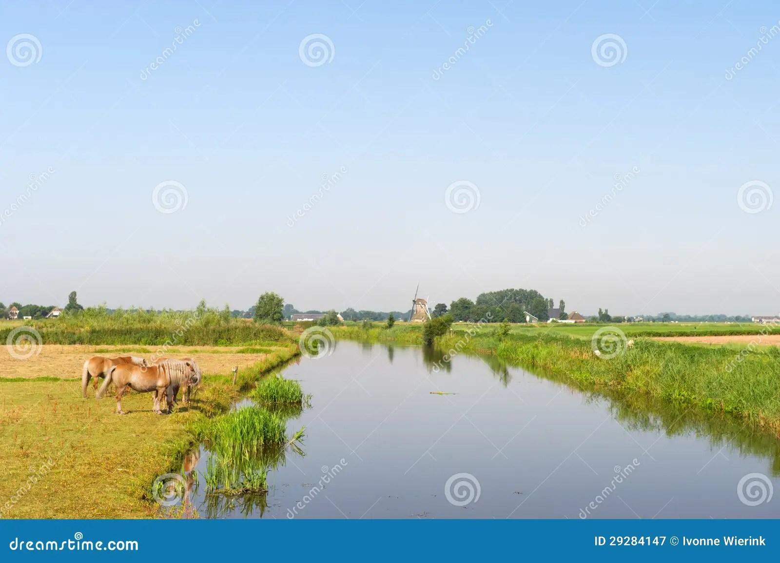 Paesaggio Olandese Con I Cavalli Acqua E Mulino A Vento