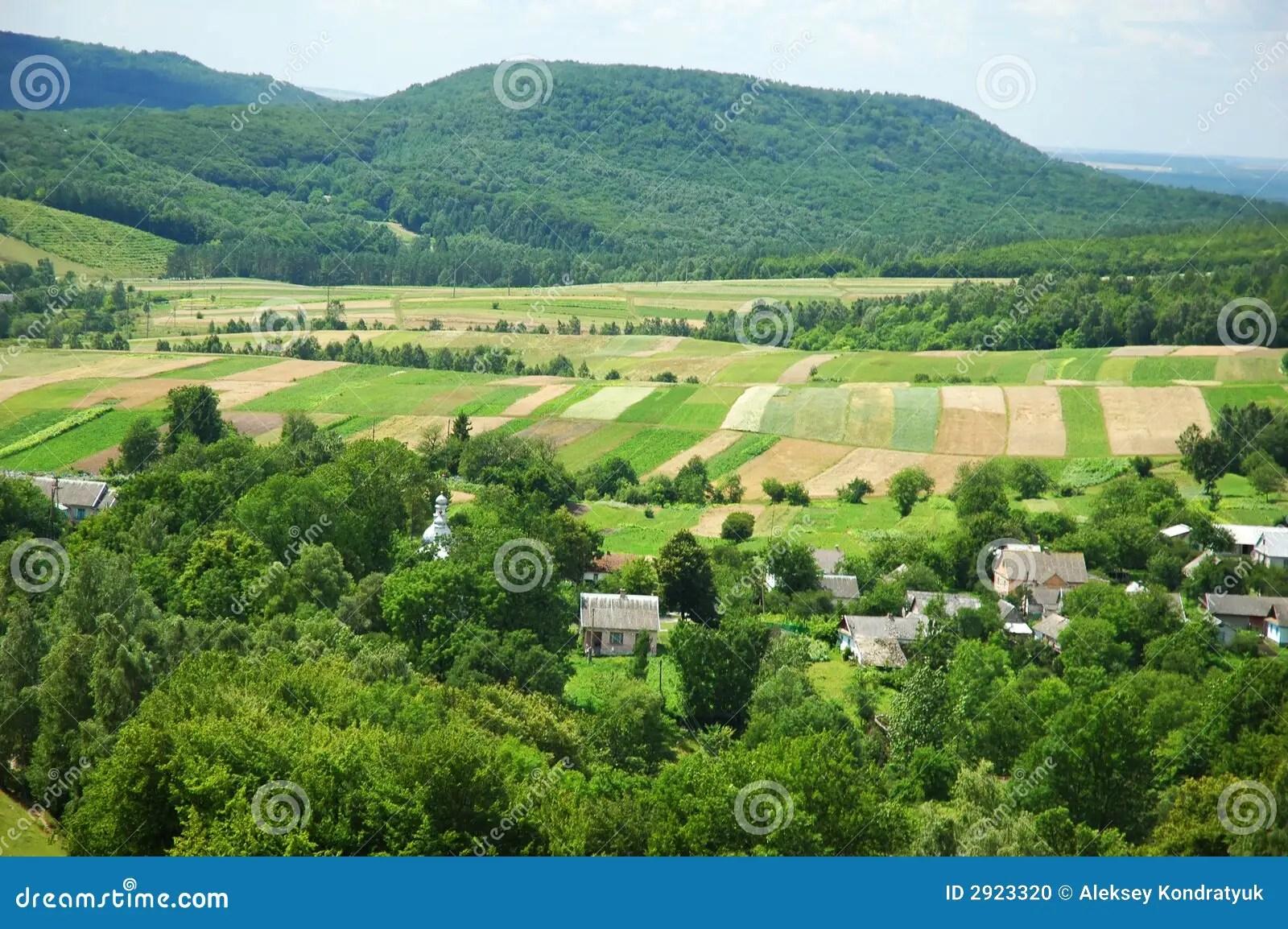 Paesaggio rurale fotografia stock Immagine di alimento  2923320
