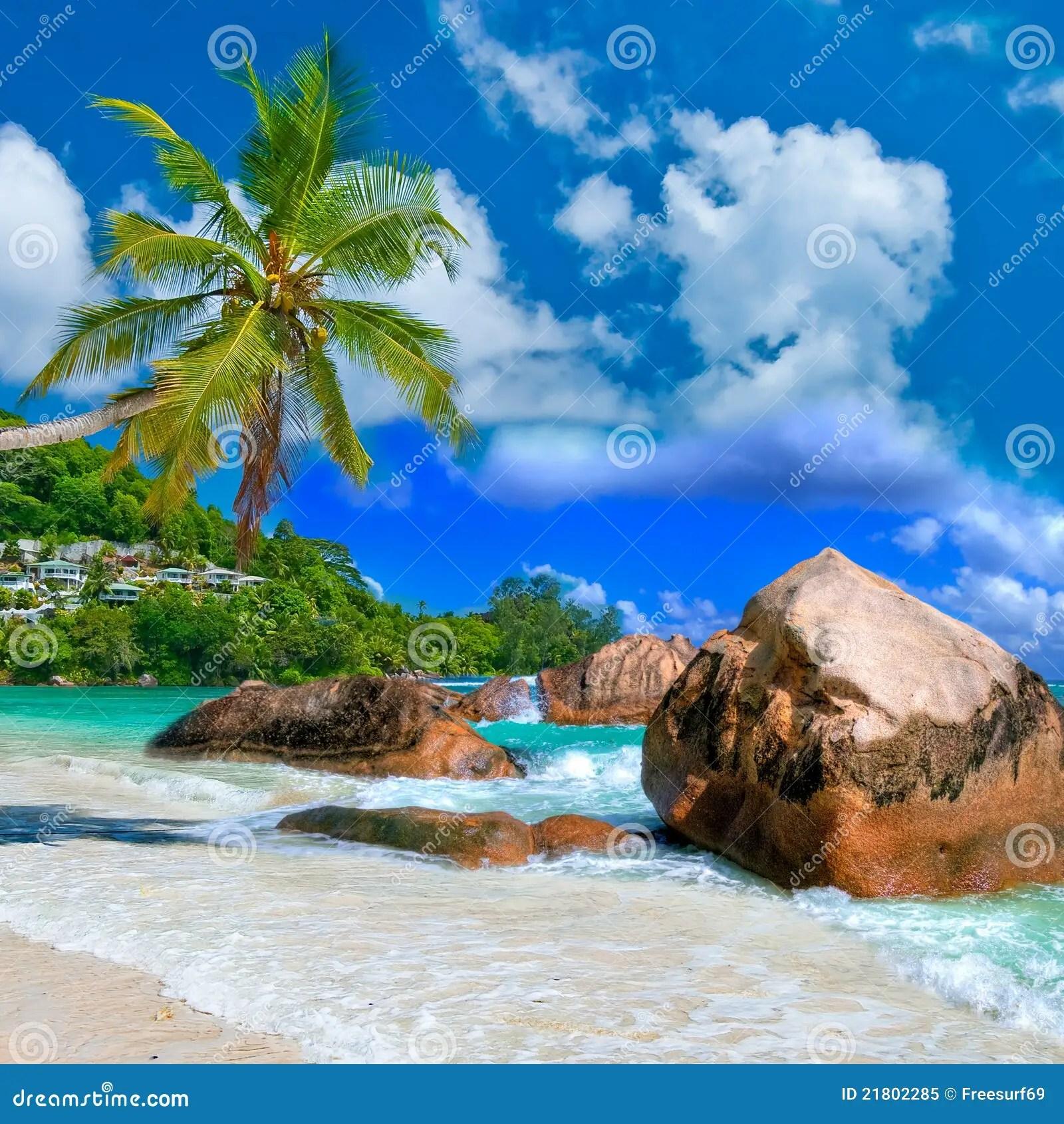 Paesaggio tropicale immagine stock Immagine di
