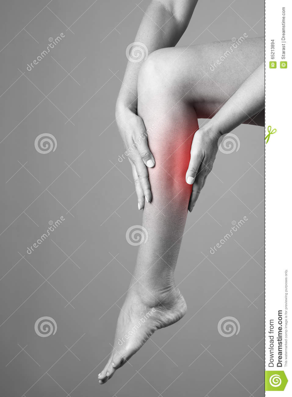 Pain In The Calf Muscle Of The Woman Massage Of Female