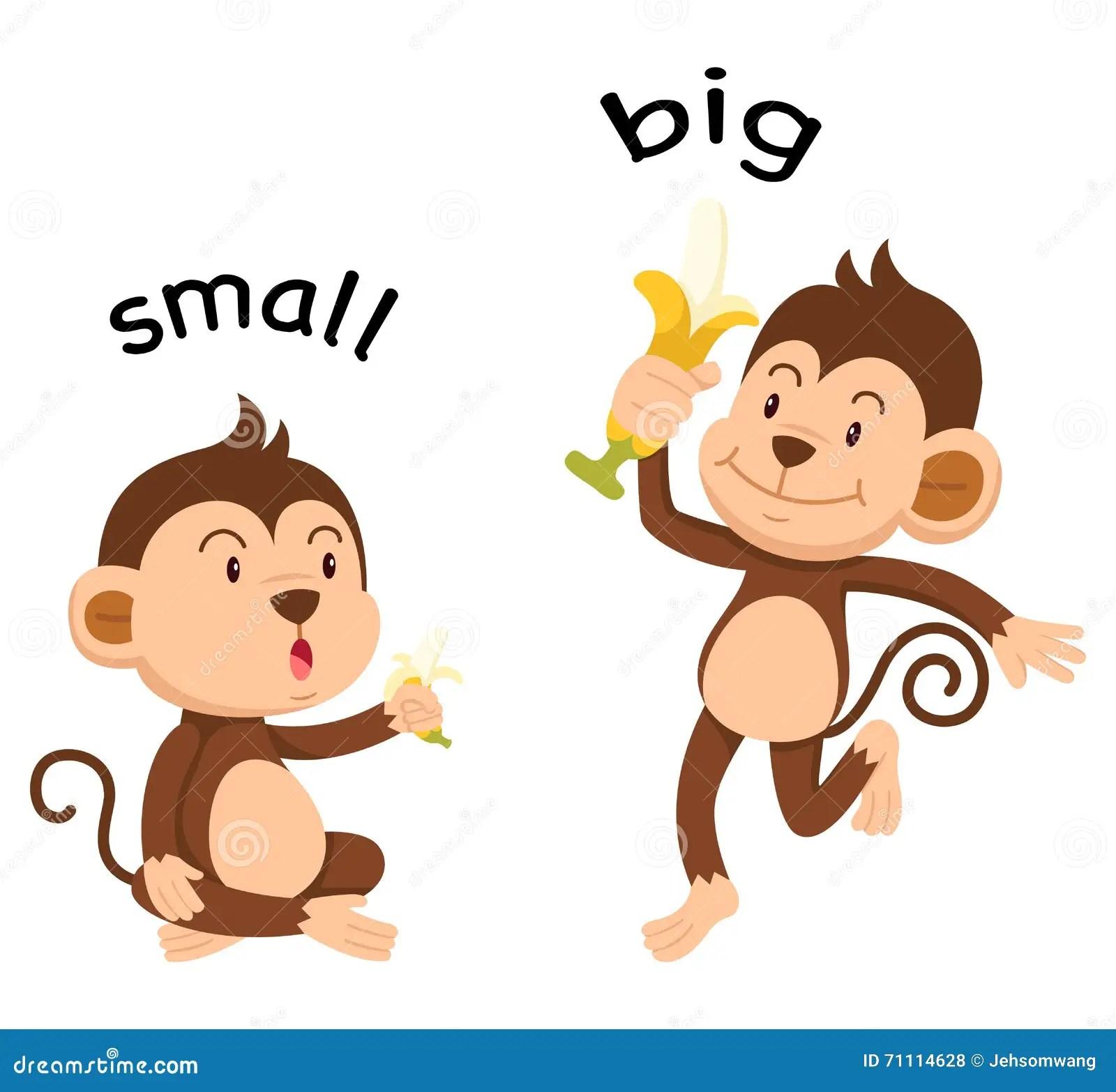 Palabras Opuestas Pequenas Y Grandes Ilustracion Del
