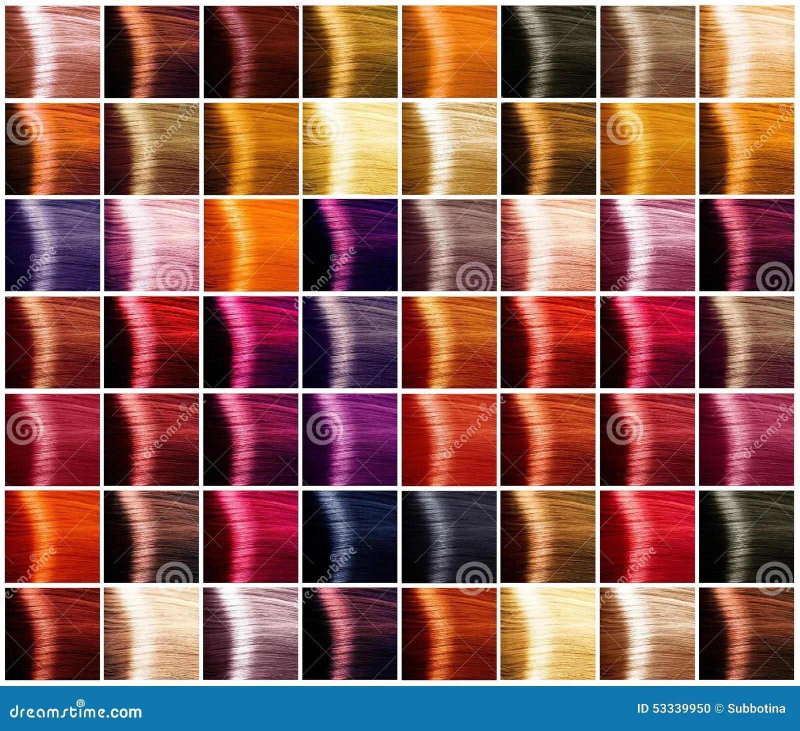 Palette De Couleurs De Cheveux Teintes Photo Stock Image