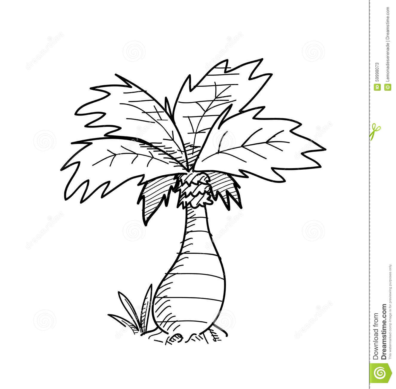 Palm Tree Doodle Stock Vector Image Of Cartoon Sketch
