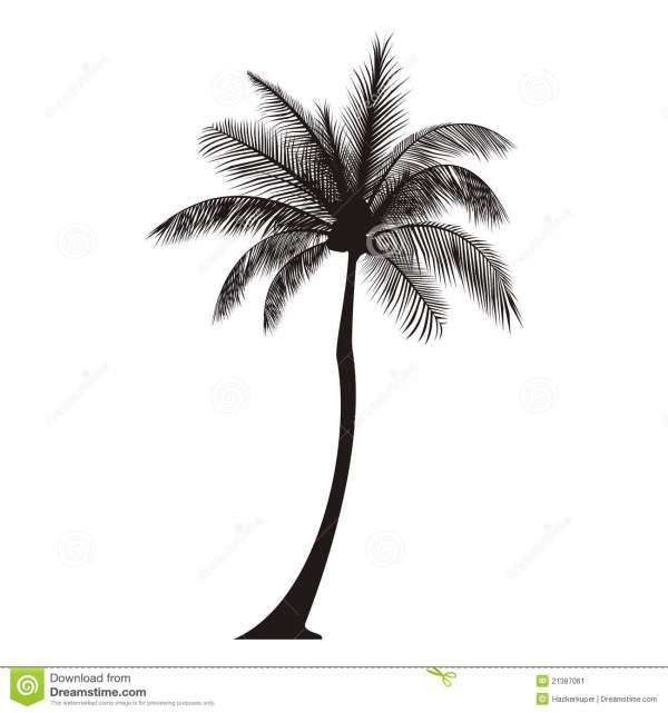 Palm Tree Silhouette Stock Vector. Illustration Of Beach