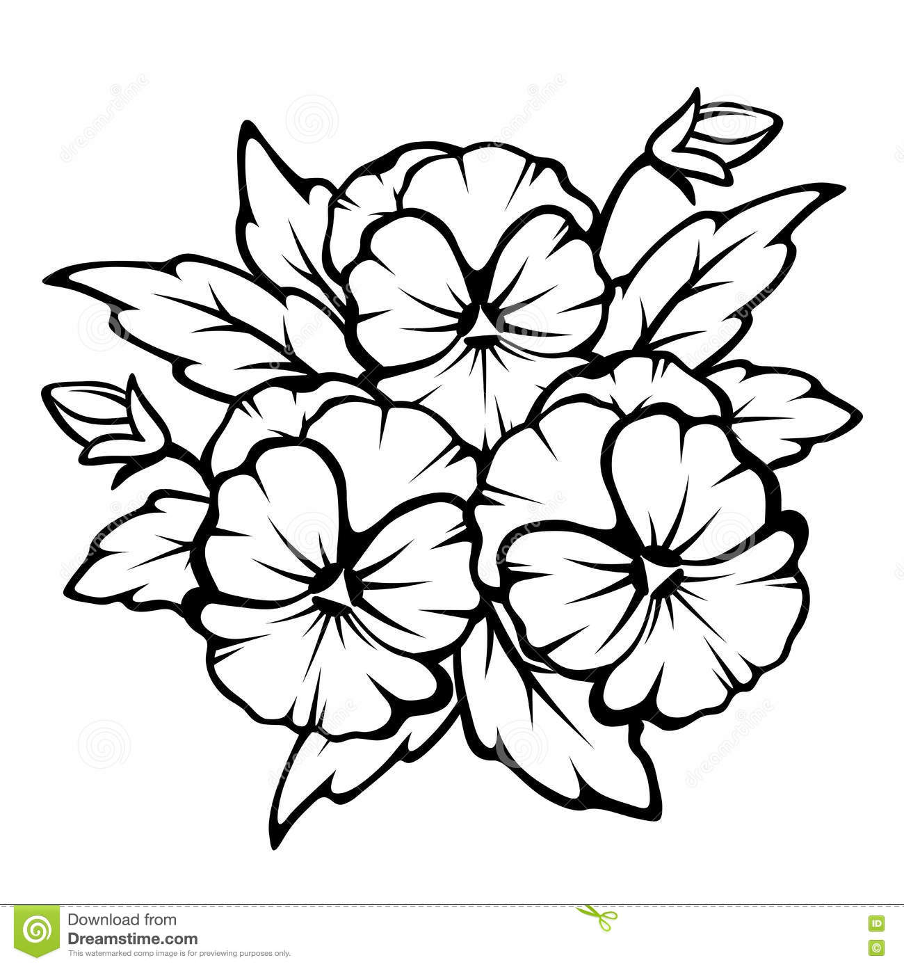 Pansy Flowers Black Contours. Vector Illustration. Stock