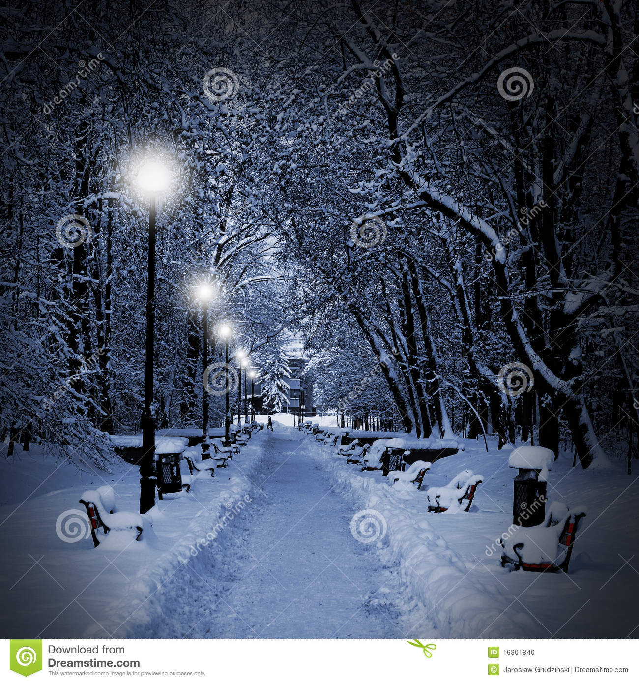 4k Laptop Wallpaper Fall Forest Park Covered With Snow At Night Stock Photo Image 16301840