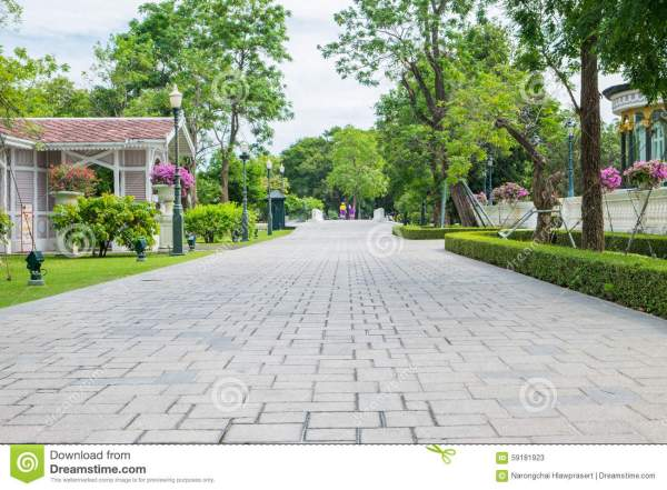 Park Outdoor With Tree And Road Stock Image Image of