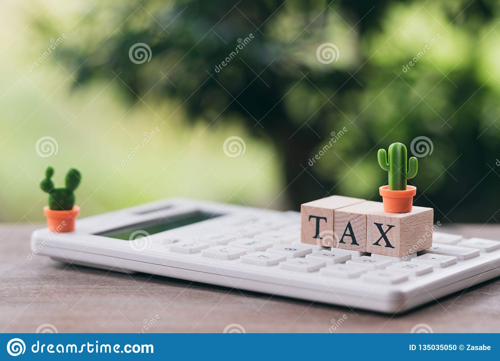Pay Annual Income Tax For The Year On Calculator Using As
