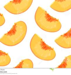 peach nectarine ripe fresh sliced fruit citrus seamless pattern vector square closeup side view beautiful orange [ 1300 x 970 Pixel ]