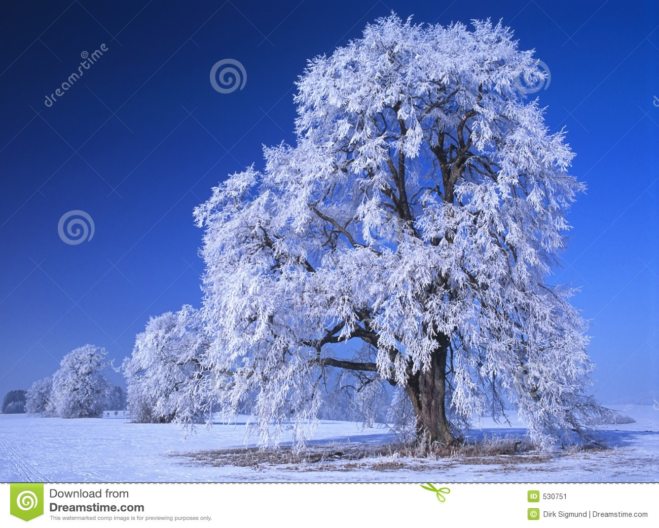 Perfect Winter Day 4 stock image Image of bright festive  530751