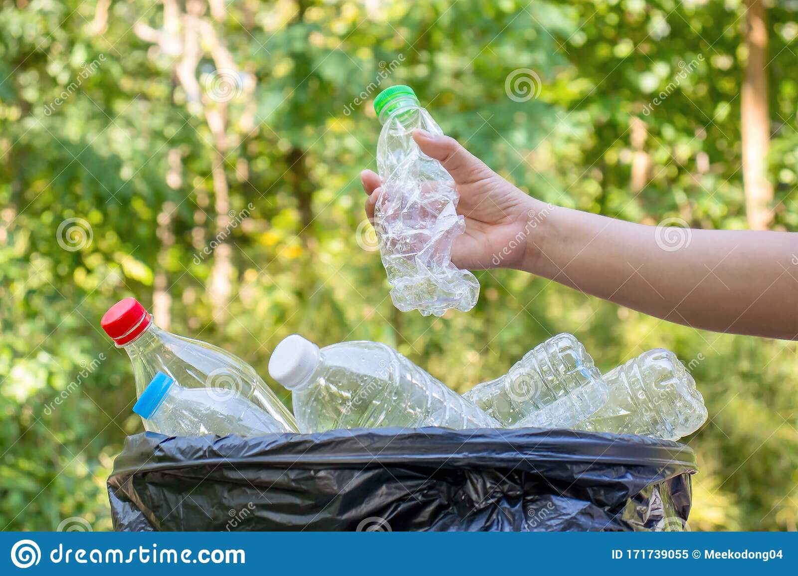 The Girl`s Hand Is Collecting Plastic Bottles For ...
