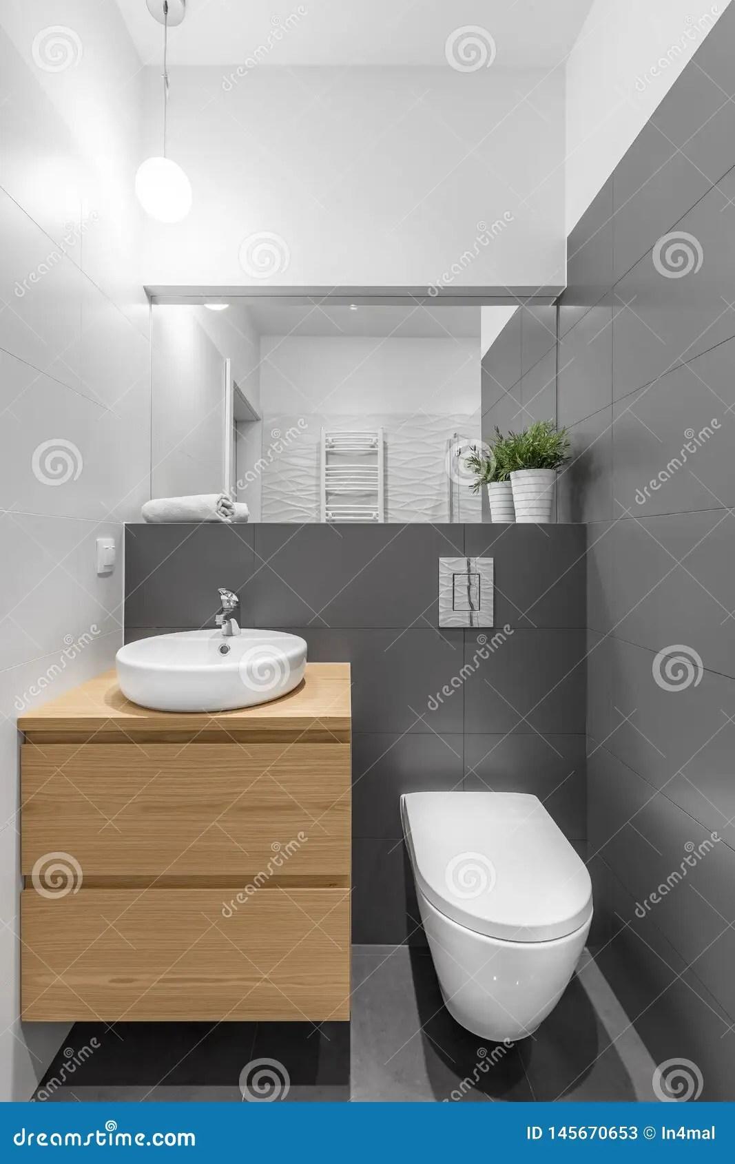 https fr dreamstime com petite salle bains grise blanche bassin toilette d armoire image145670653