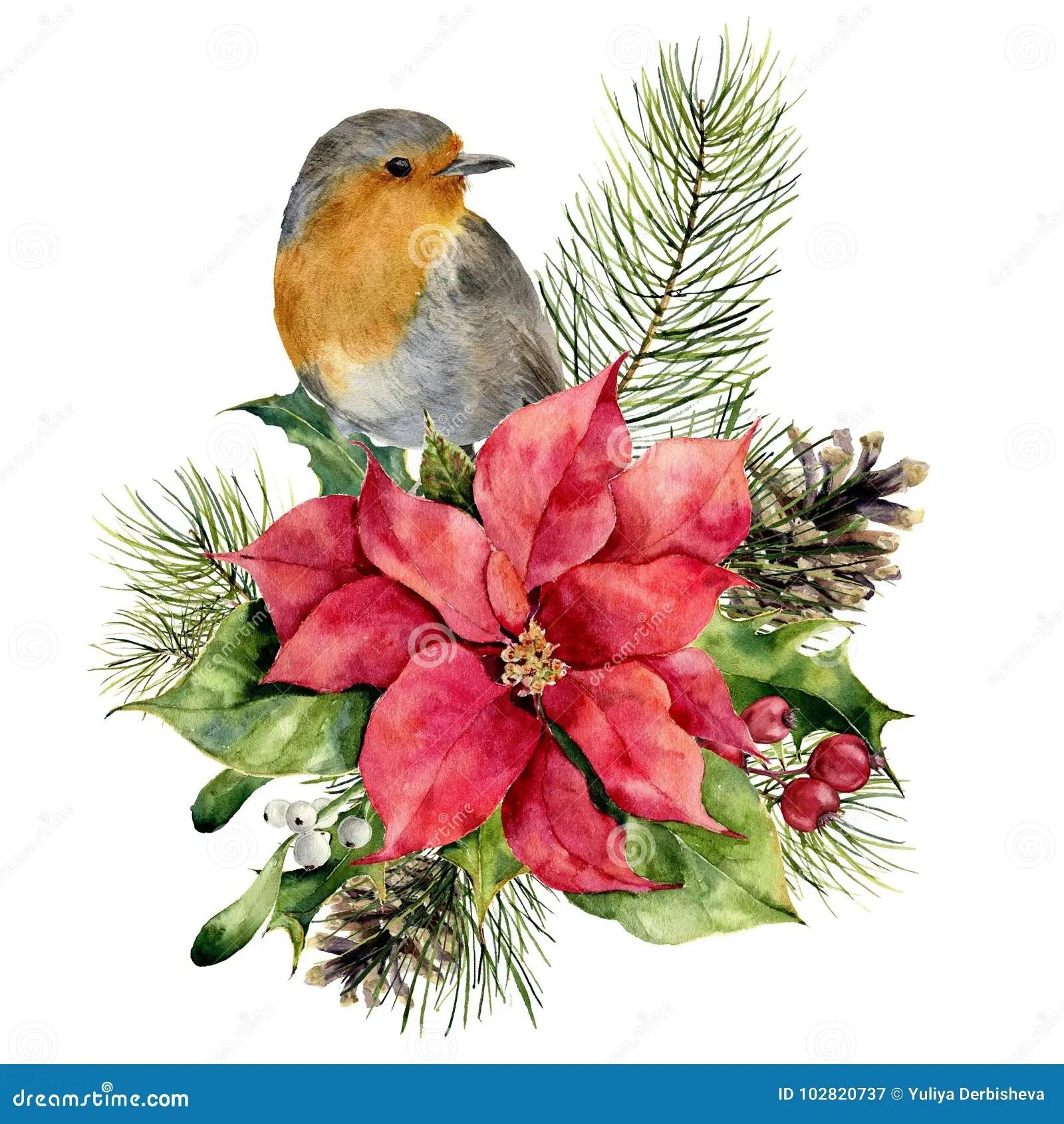 La Stella Di Natale Canzone.Stella E Robin