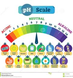 ph acid scale vector illustration diagram with acidic neutral and diagram od acid [ 1300 x 1223 Pixel ]