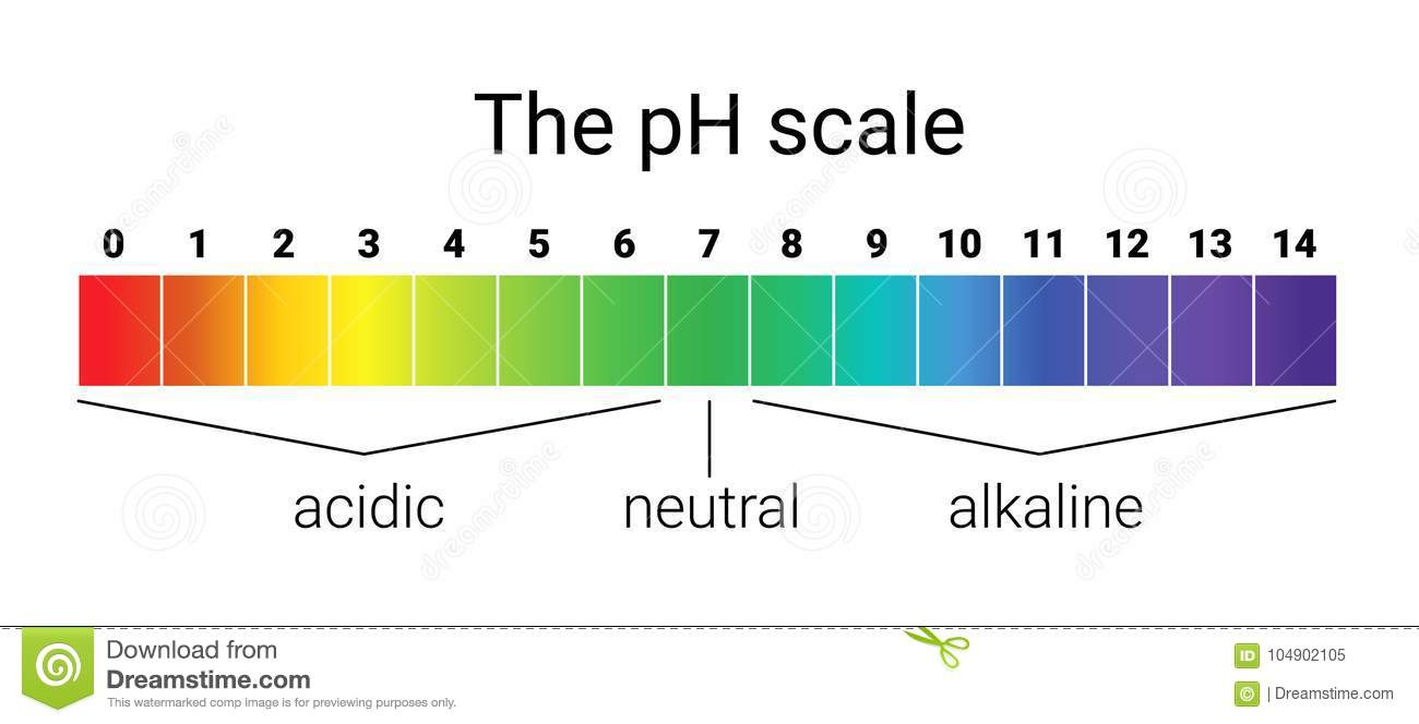 hight resolution of ph scale infographic acid base balance scale for chemical analysis test ph scale diagram