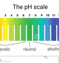test ph scale diagram wiring diagram go ph scale infographic acid base balance scale for chemical [ 1300 x 811 Pixel ]