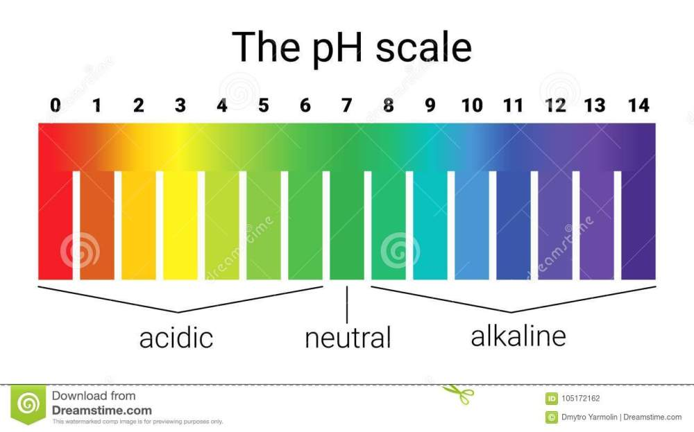 medium resolution of test ph scale diagram wiring diagram go ph scale infographic acid base balance scale for chemical
