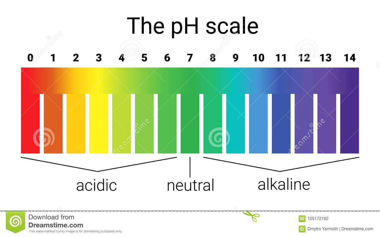 hight resolution of test ph scale diagram wiring diagram go ph scale infographic acid base balance scale for chemical