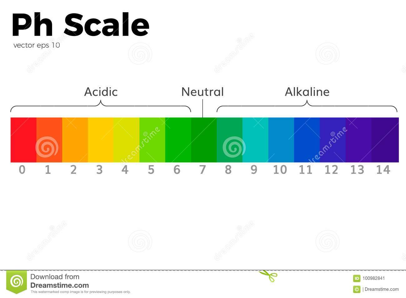 hight resolution of the ph scale universal indicator ph color chart diagram acidic alkaline values common substances vector