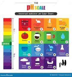 the ph scale universal indicator ph color chart diagram acidic alkaline values common substances vector illustration flat icon design colorful [ 1300 x 1390 Pixel ]
