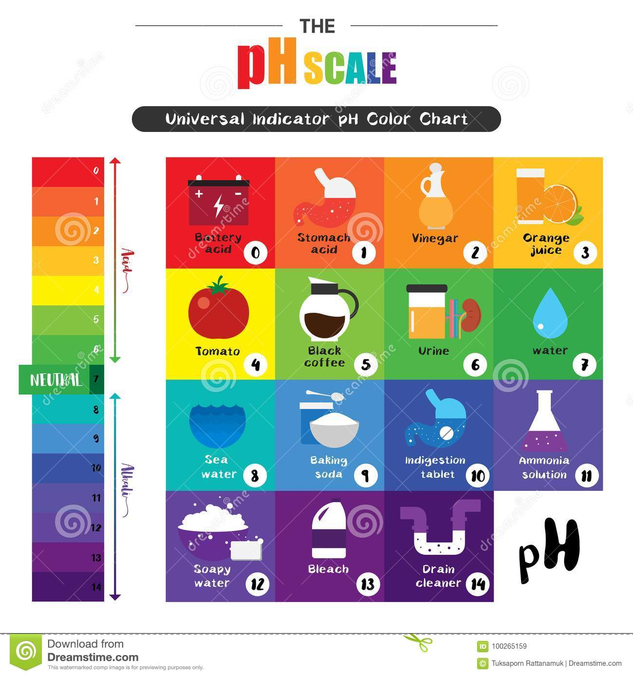 hight resolution of the ph scale universal indicator ph color chart diagram acidic alkaline values common substances vector illustration flat icon design colorful