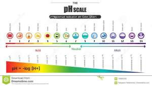 The PH Scale Universal Indicator PH Color Chart Diagram
